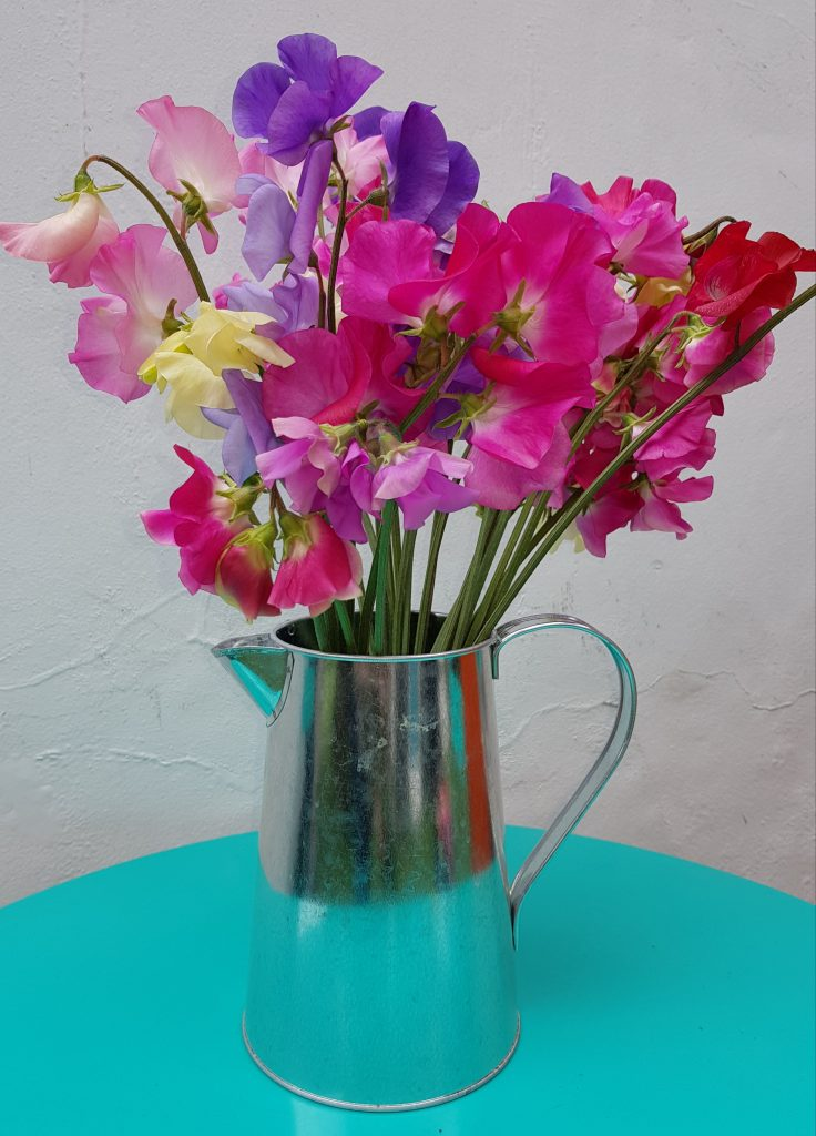 Sweet peas in a silver jug